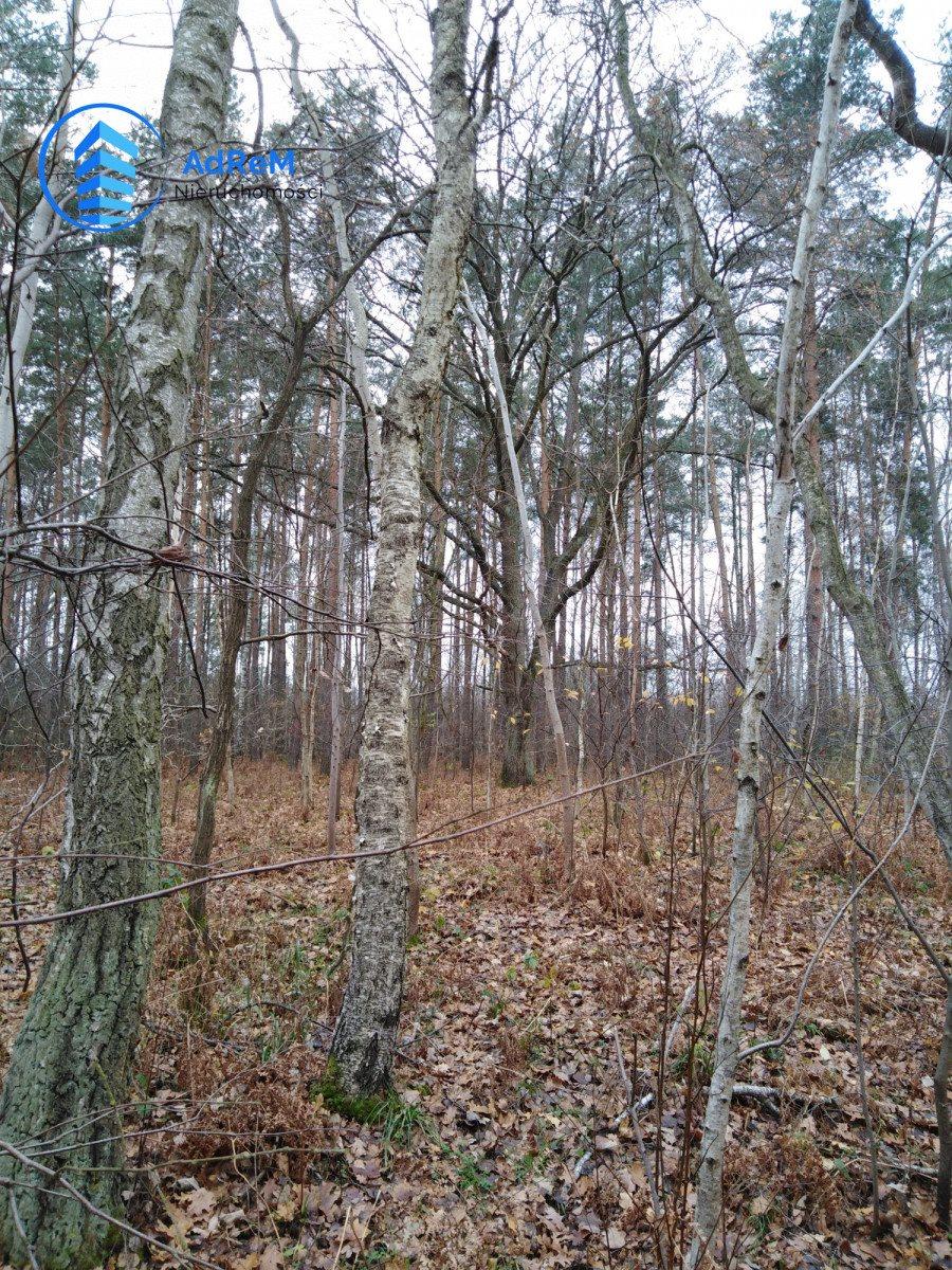 Działka leśna na sprzedaż Nowy Prażmów, Leśna  1521m2 Foto 6