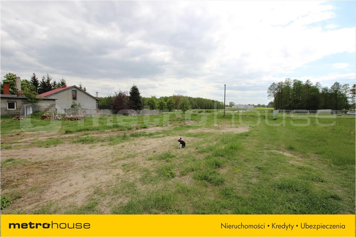 Działka rolna na sprzedaż Feliksów, Poddębice  7000m2 Foto 5
