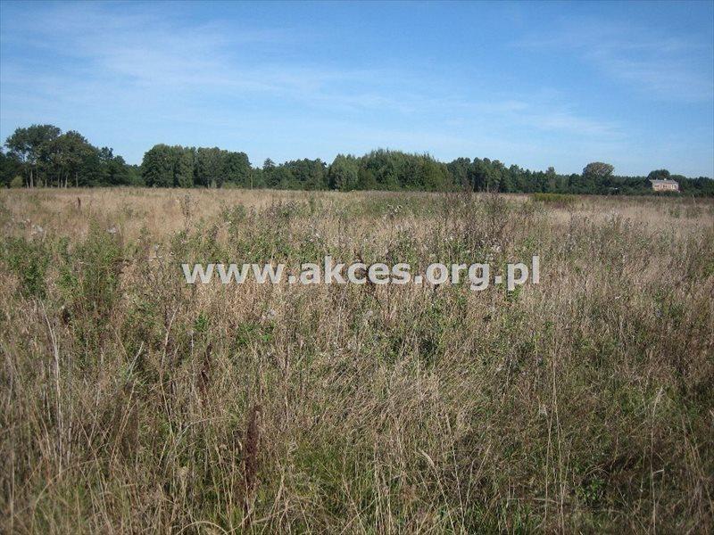 Działka budowlana na sprzedaż Adamów-Parcel  3850m2 Foto 2