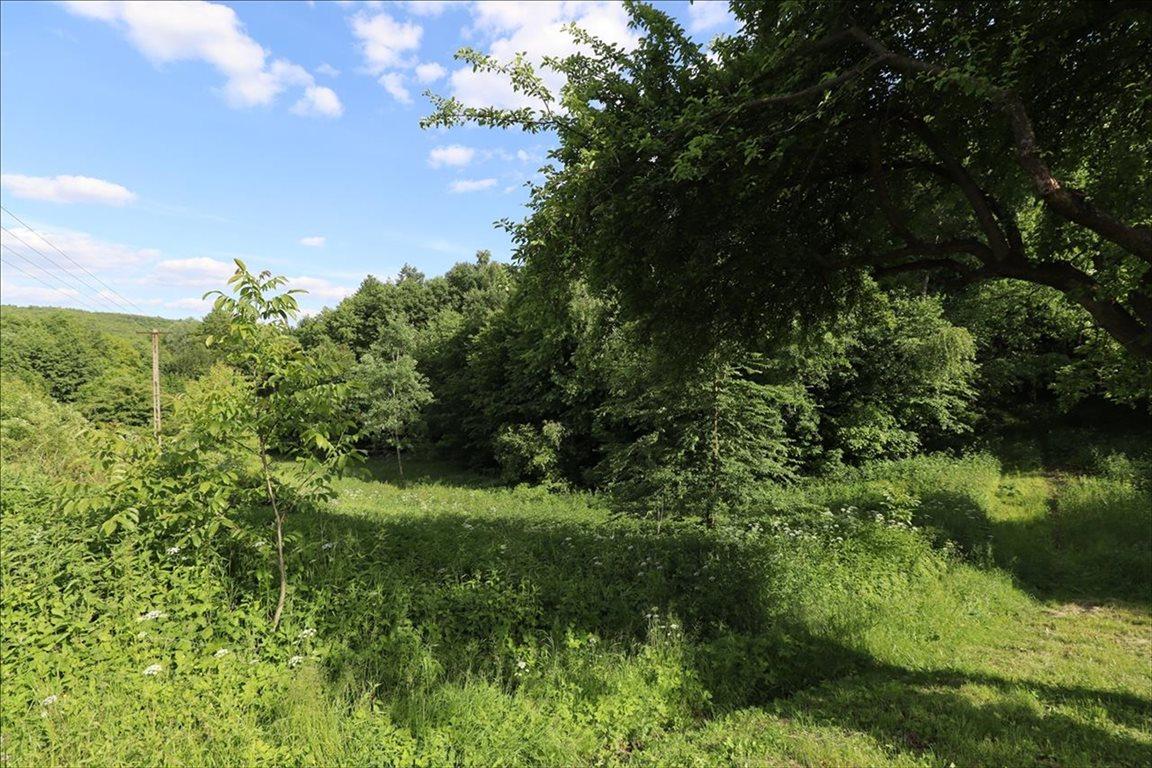 Działka rolna na sprzedaż Wola Zgłobieńska, Boguchwała  7500m2 Foto 4