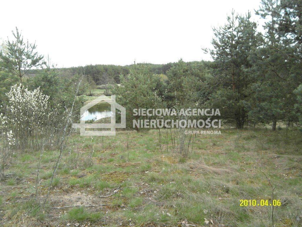 Działka leśna na sprzedaż Huta Kalna  20250m2 Foto 7