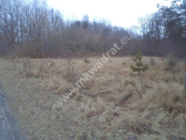 Działka leśna na sprzedaż Raducz  8600m2 Foto 6