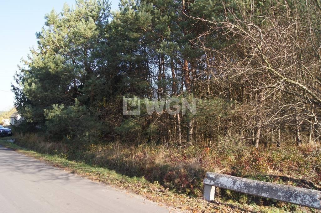 Działka siedliskowa na sprzedaż Strzelno, Strzelno  16200m2 Foto 11