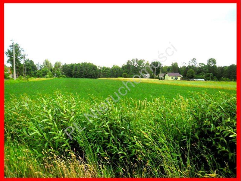 Działka rolna na sprzedaż Lubomin  14500m2 Foto 1