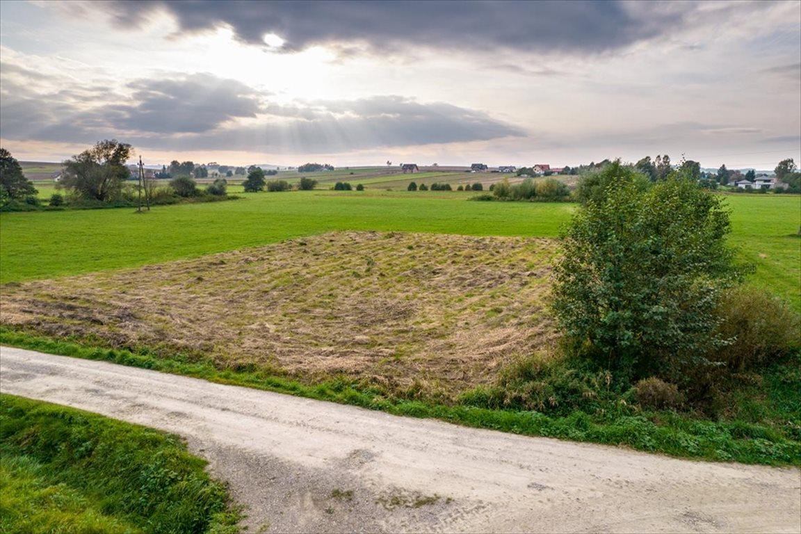 Działka rolna na sprzedaż Nockowa, Iwierzyce  2100m2 Foto 3