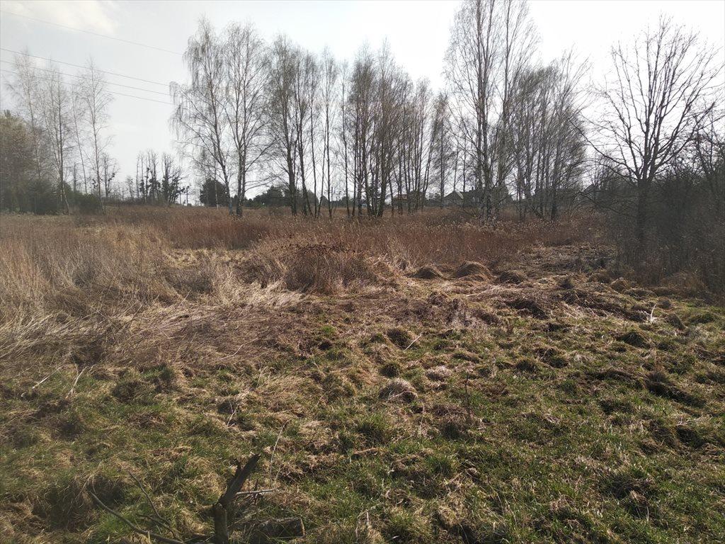 Działka budowlana na sprzedaż Mrozów, Działka mieszkaniowo - usługowa  5800m2 Foto 1