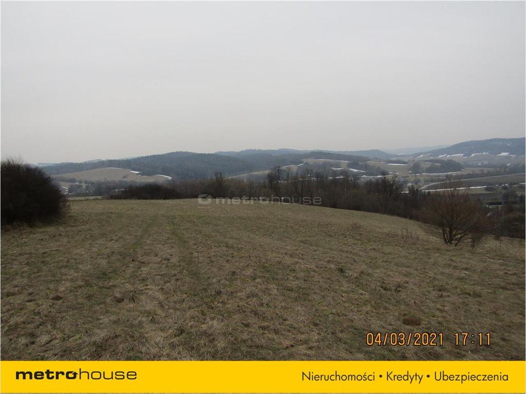 Działka rolna na sprzedaż Morochów, Zagórz  10000m2 Foto 9