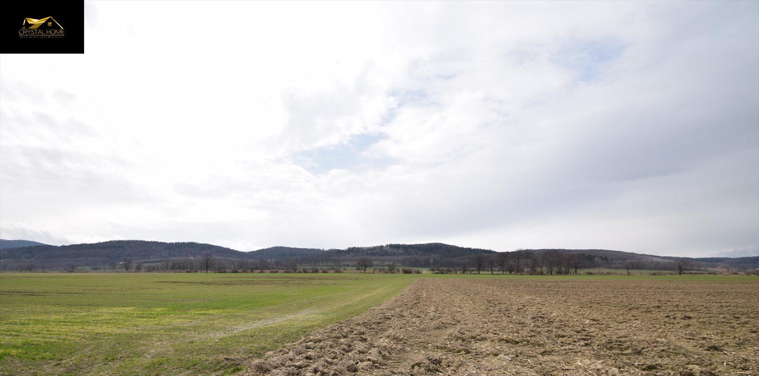 Działka rolna na sprzedaż Burkatów  32610m2 Foto 4