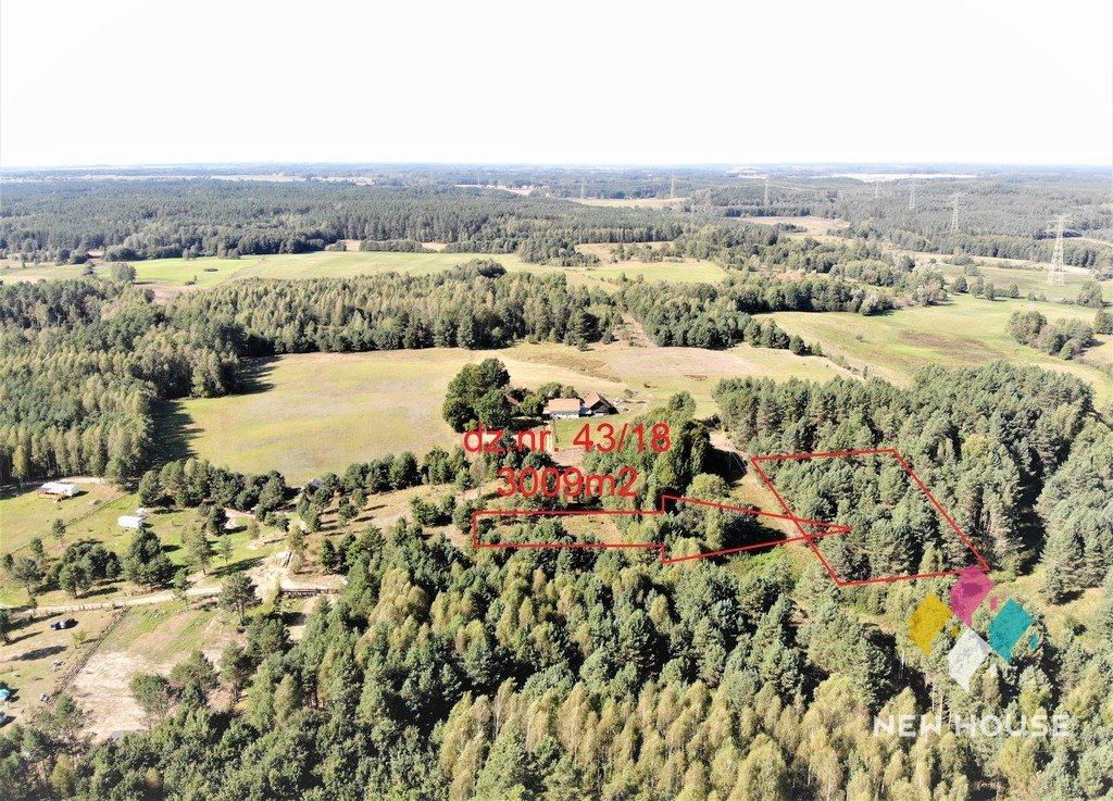 Działka rolna na sprzedaż Giławy  3009m2 Foto 2