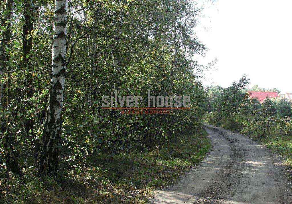 Działka siedliskowa na sprzedaż Boryszew  15000m2 Foto 6