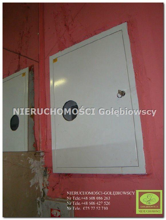 Lokal użytkowy na sprzedaż Pieńsk  455m2 Foto 7