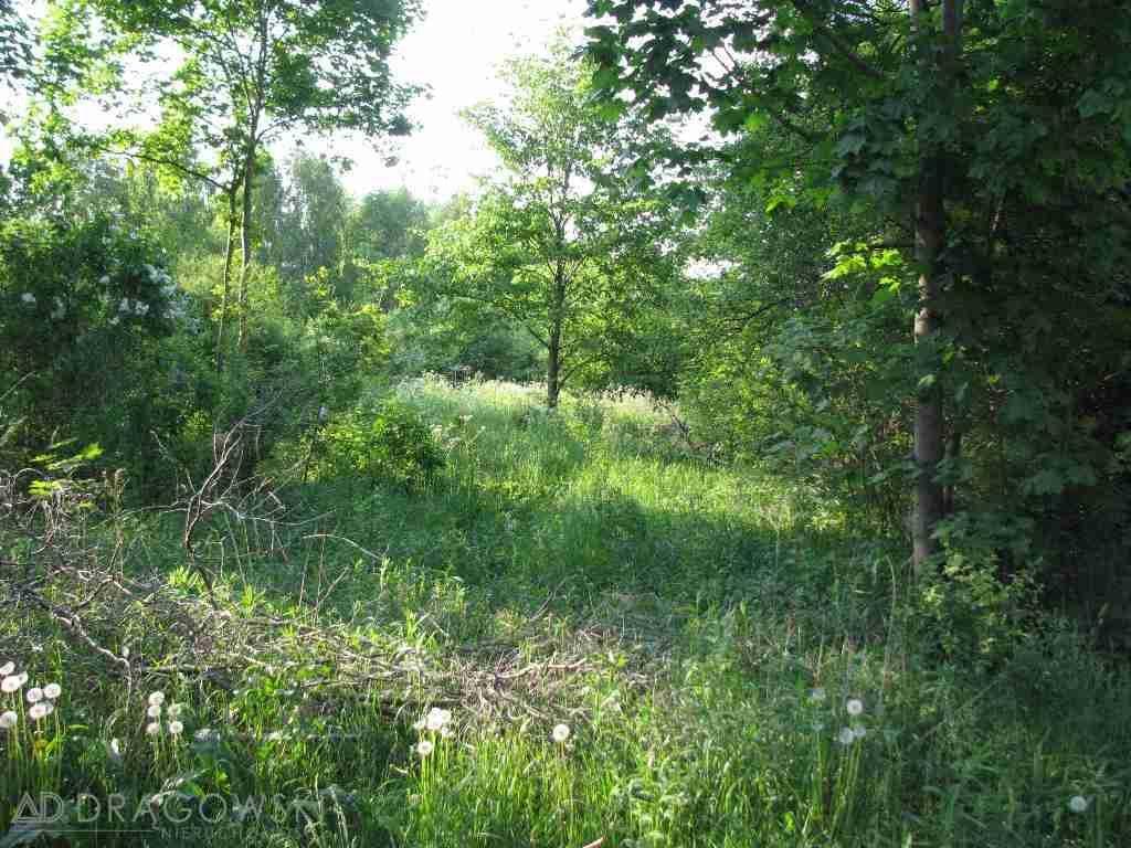Działka leśna na sprzedaż Popowo-Letnisko  2880m2 Foto 1