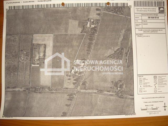 Działka przemysłowo-handlowa na sprzedaż Mały Klincz  30090m2 Foto 4