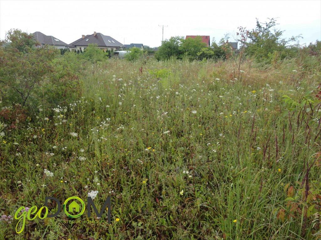 Działka budowlana na sprzedaż Chełm, Klonowa  900m2 Foto 2