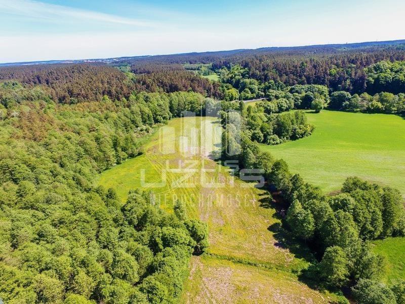 Działka rolna na sprzedaż Czarnocin  5900m2 Foto 1