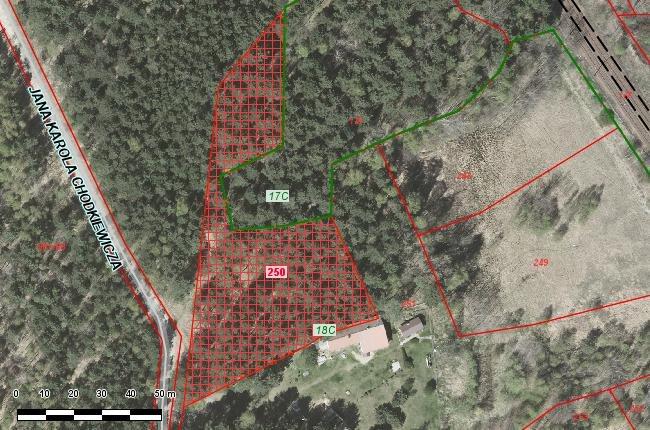 Działka leśna na sprzedaż Jaworzno, Ciężkowice, Chodkiewicza  3778m2 Foto 2