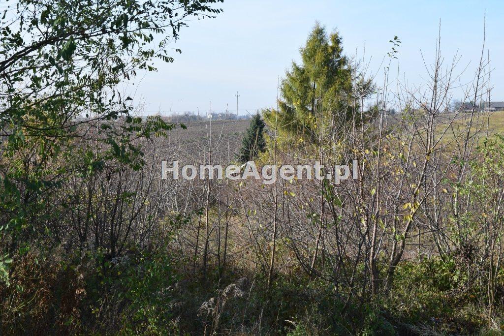 Działka budowlana na sprzedaż Wielka Wieś  7400m2 Foto 7