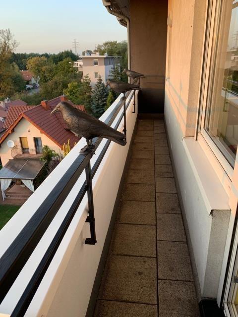 Mieszkanie dwupokojowe na sprzedaż Kraków, Podgórze Duchackie  50m2 Foto 7