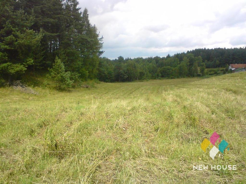 Działka rolna na sprzedaż Pupki  3037m2 Foto 5