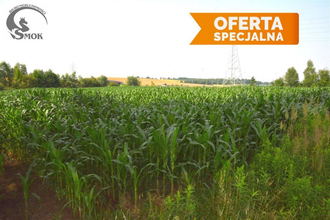 Działka rolna na sprzedaż Zakrzowiec  9715m2 Foto 1