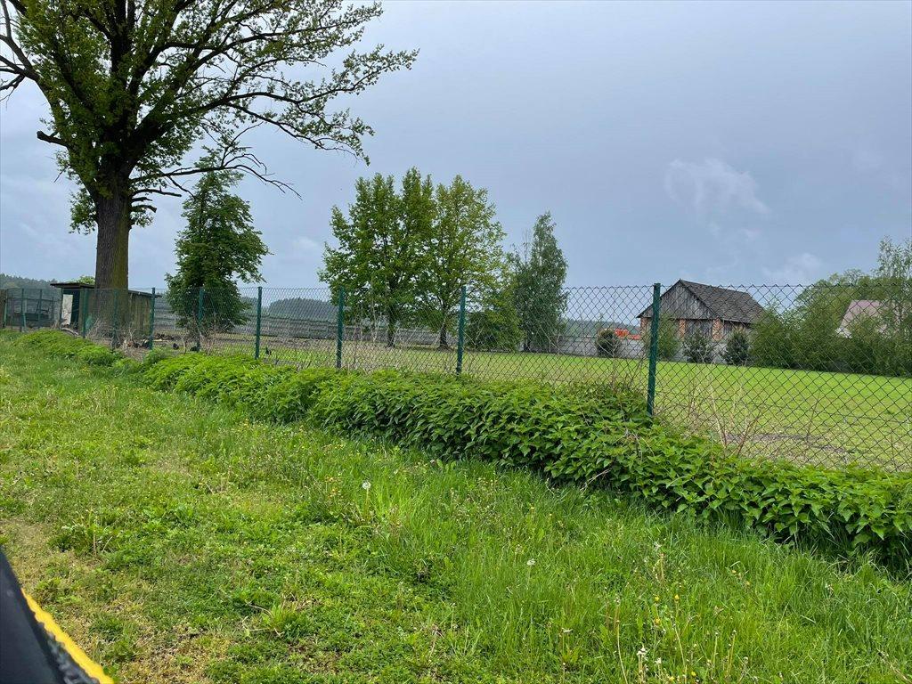 Działka gospodarstwo rolne na sprzedaż Przystajń, Ługi Radły, Kościelna 29a  60000m2 Foto 7