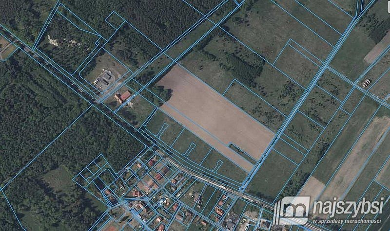 Działka rolna na sprzedaż Grabno, Grabno  12000m2 Foto 2