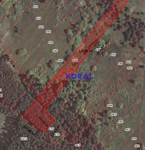Działka leśna na sprzedaż Skrzypiów, Pińczów - Skrzypiów  10400m2 Foto 1