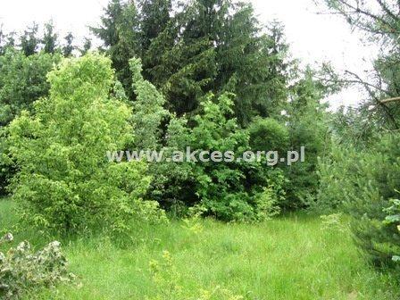 Działka siedliskowa na sprzedaż Jeziórka  14000m2 Foto 2