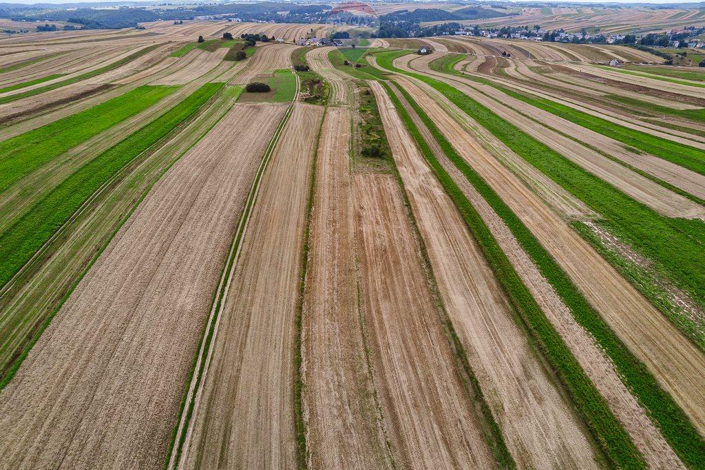Działka rolna na sprzedaż Sułoszowa  14190m2 Foto 8