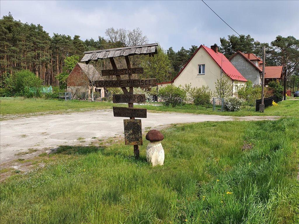 Działka budowlana na sprzedaż Czeszów, Zawonia  9863m2 Foto 1
