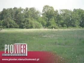 Działka rolna na sprzedaż Kołbaskowo  3003m2 Foto 1