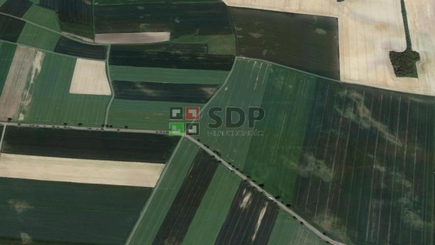 Działka przemysłowo-handlowa na sprzedaż Kostomłoty  24256m2 Foto 6