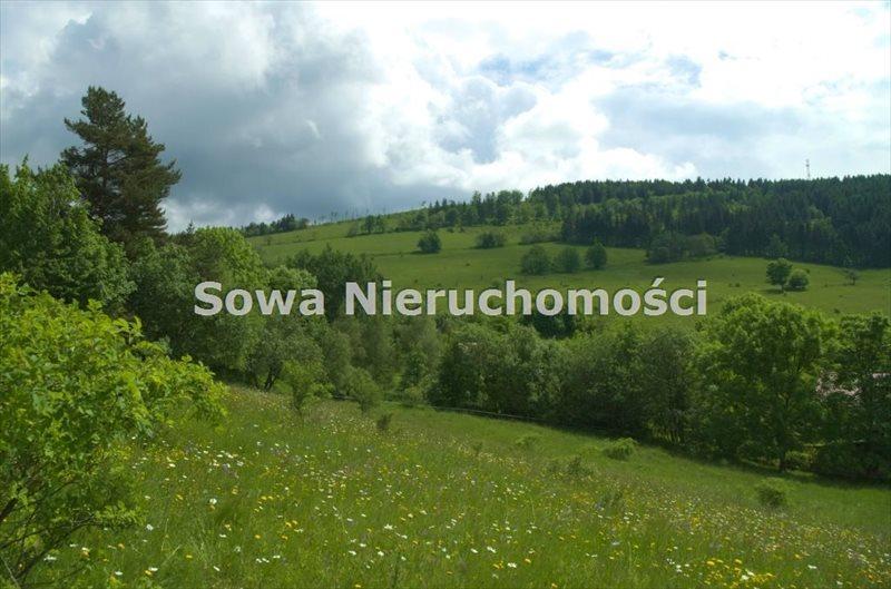 Działka budowlana na sprzedaż Sierpnica  1000m2 Foto 5