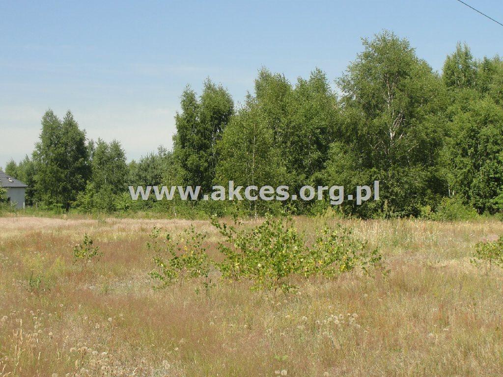 Działka rolna na sprzedaż Dobrzenica  40900m2 Foto 1