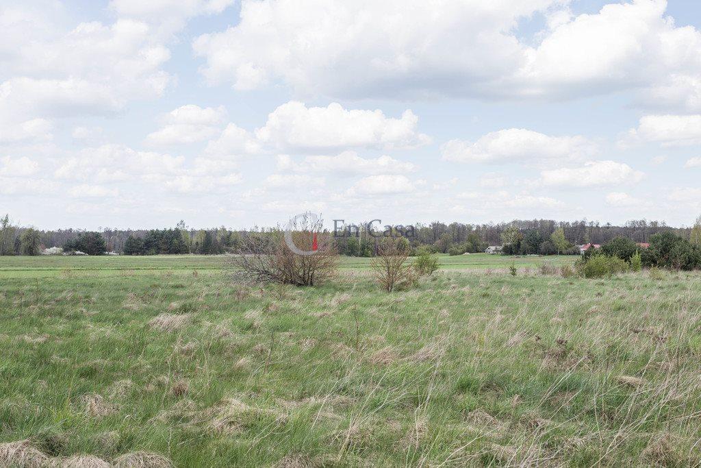 Działka budowlana na sprzedaż Wycinki Osowskie, Przejazdowa  10200m2 Foto 4