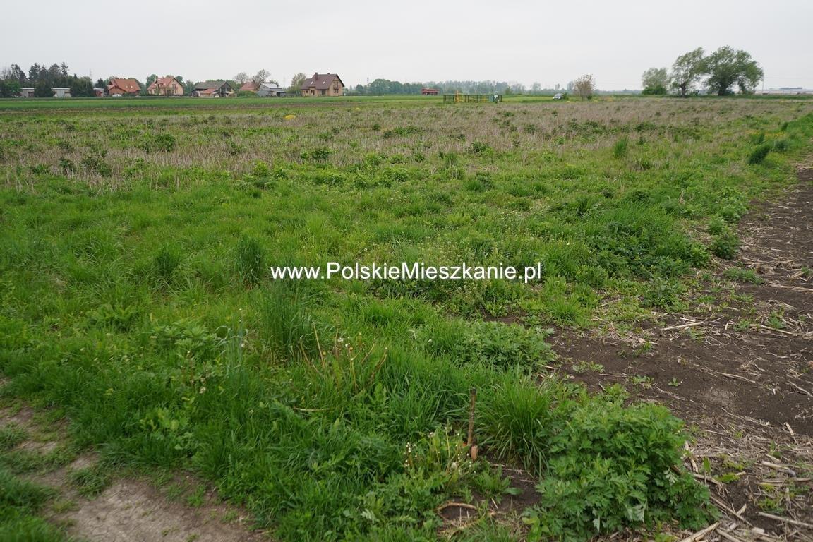 Działka rolna na sprzedaż Przemyśl, Krówniki  5500m2 Foto 2