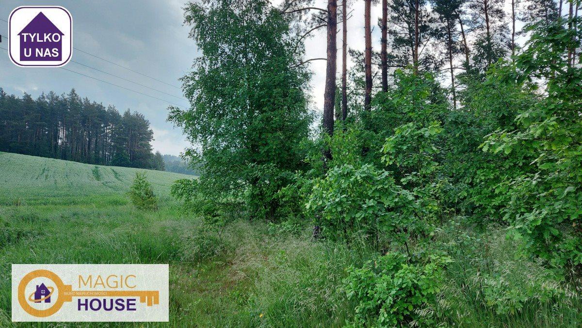 Działka leśna na sprzedaż Gołubie  18900m2 Foto 3