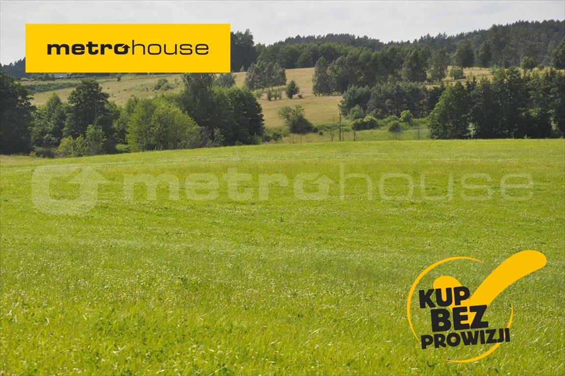 Działka rolna na sprzedaż Blanki, Lidzbark Warmiński  10921m2 Foto 1
