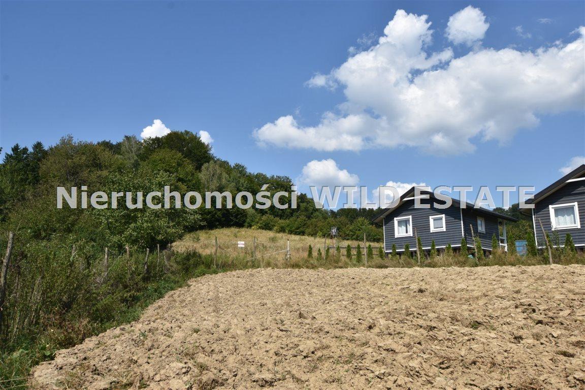 Działka rolna na sprzedaż Olszanica, Orelec  2489m2 Foto 4