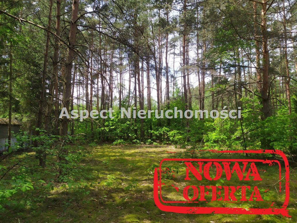 Działka rekreacyjna na sprzedaż Łochów, Jerzyska  1400m2 Foto 7