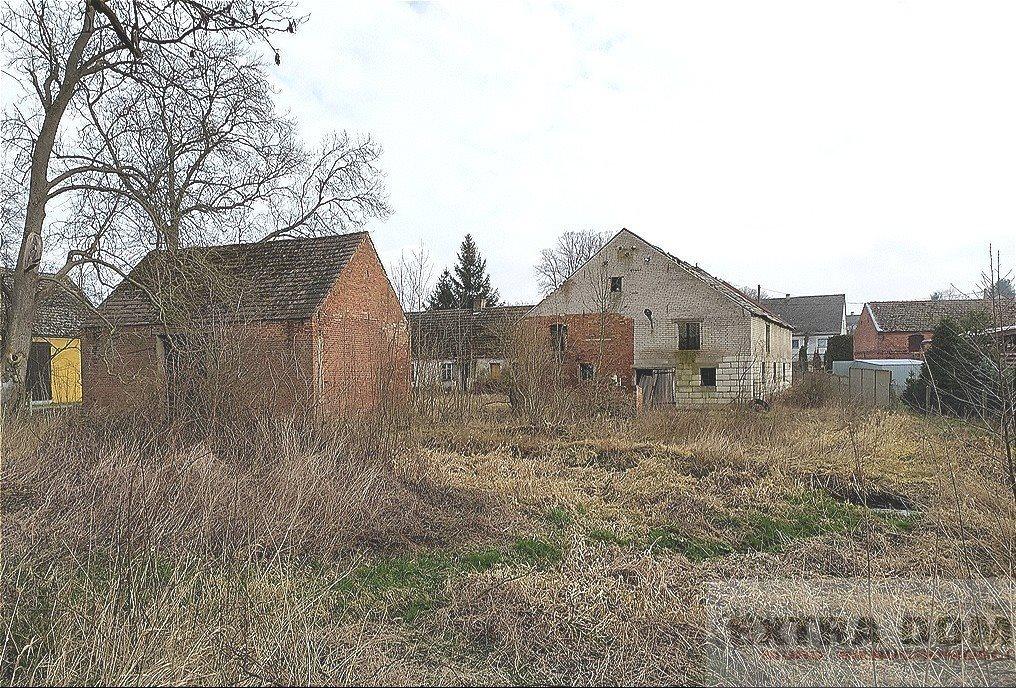Dom na sprzedaż Maszewo  1700m2 Foto 6