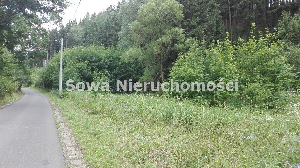 Działka inna na sprzedaż Mieroszów, okolice Mieroszowa  3900m2 Foto 1