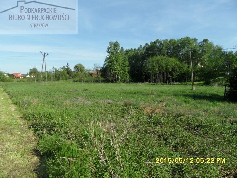 Działka rolna na sprzedaż Przybówka  4200m2 Foto 1