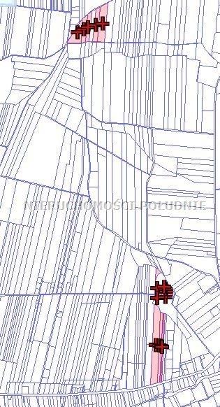 Działka budowlana na sprzedaż Lisów  75554m2 Foto 4