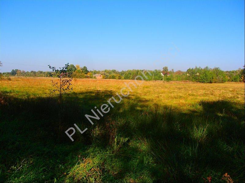 Działka rolna na sprzedaż Stanisławów  12800m2 Foto 2