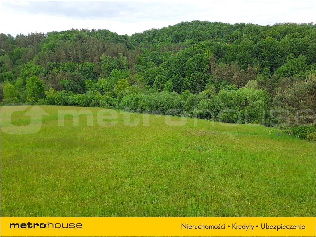 Działka rolna na sprzedaż Średnia Wieś, Lesko  10300m2 Foto 5