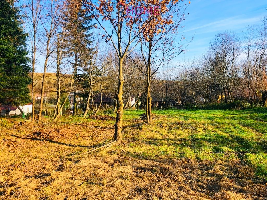 Działka leśna na sprzedaż Siedleczka  10150m2 Foto 3