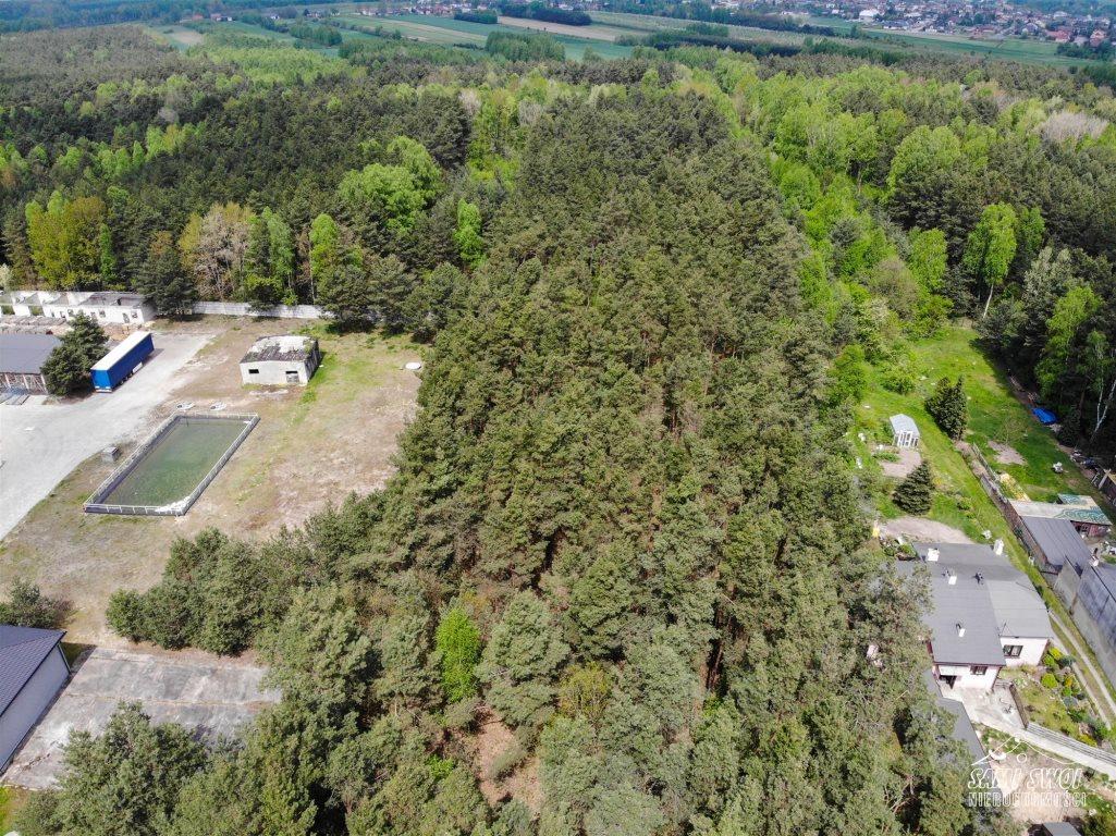 Działka leśna na sprzedaż Pożdżenice  6206m2 Foto 4