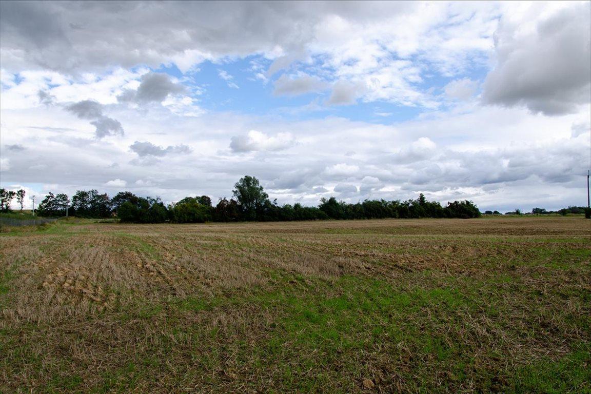 Działka siedliskowa na sprzedaż Wełtyń, Gryfino  18700m2 Foto 4