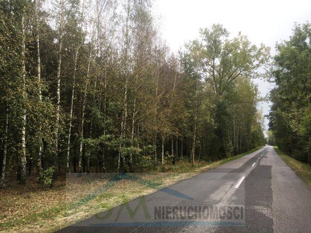 Działka leśna na sprzedaż Serock, las  3000m2 Foto 2